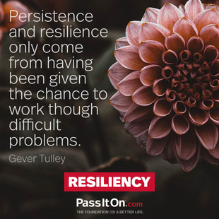 Persistence and resilience only come from having been given the chance to work though difficult problems. #<Author:0x00005562783b2830>