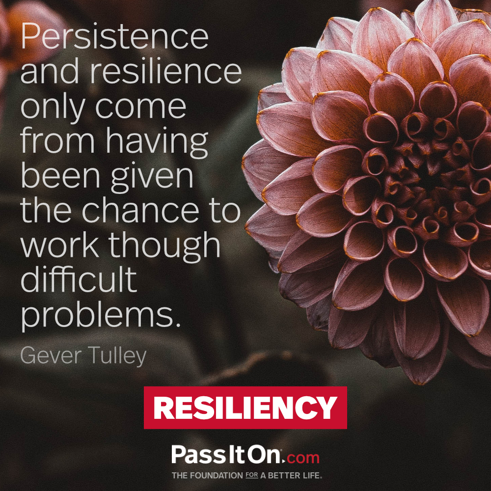 Persistence and resilience only come from having been given the chance to work though difficult problems. —Gever Tulley